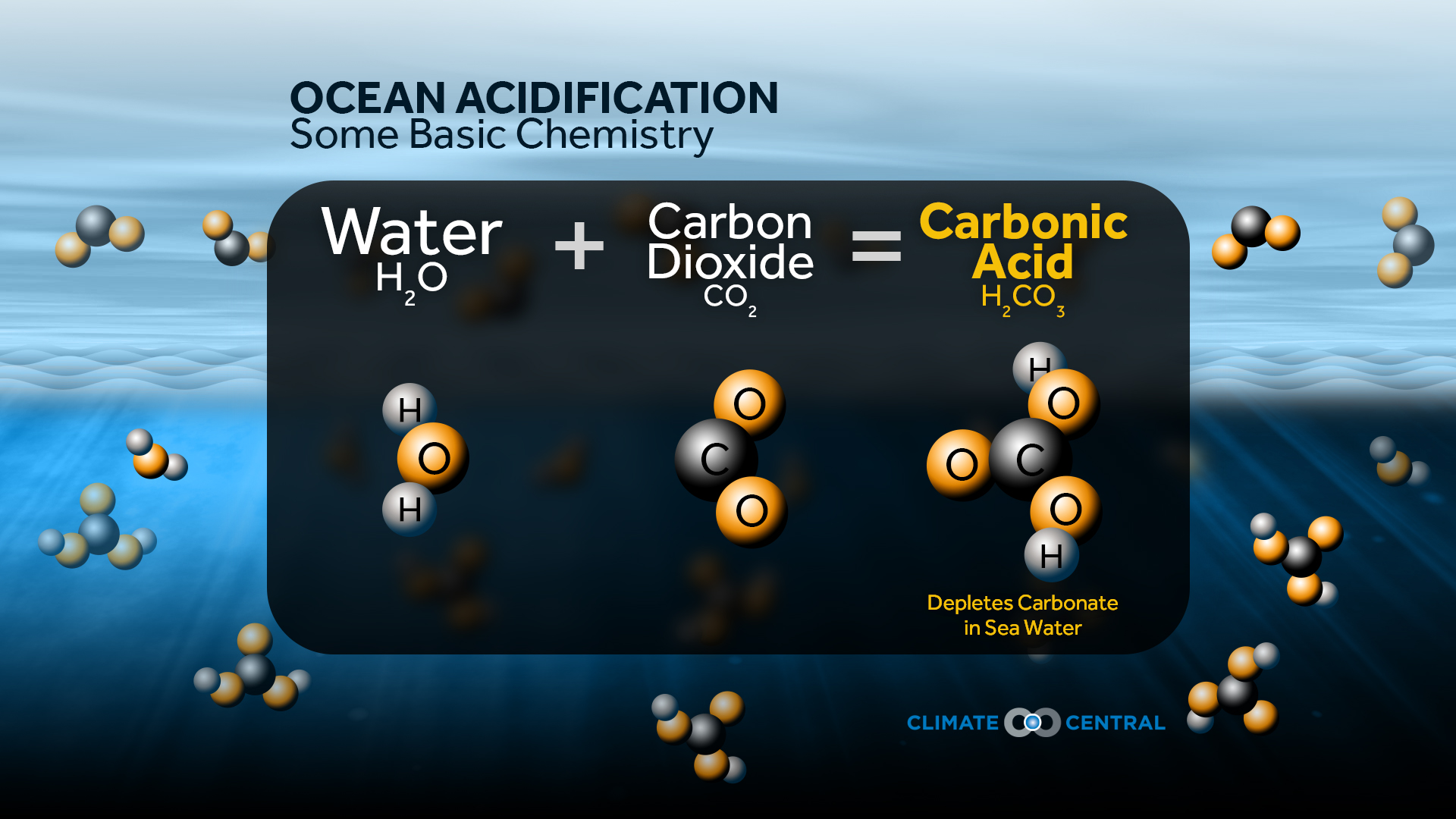 Carbonic >> Ocean Acidification: More CO2 = More Acidic | Climate Central
